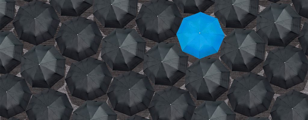 Bird's eye view of opened black umbrellas with one blue umbrella standing out.